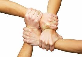 دوازده قانون وفاداری مشتری